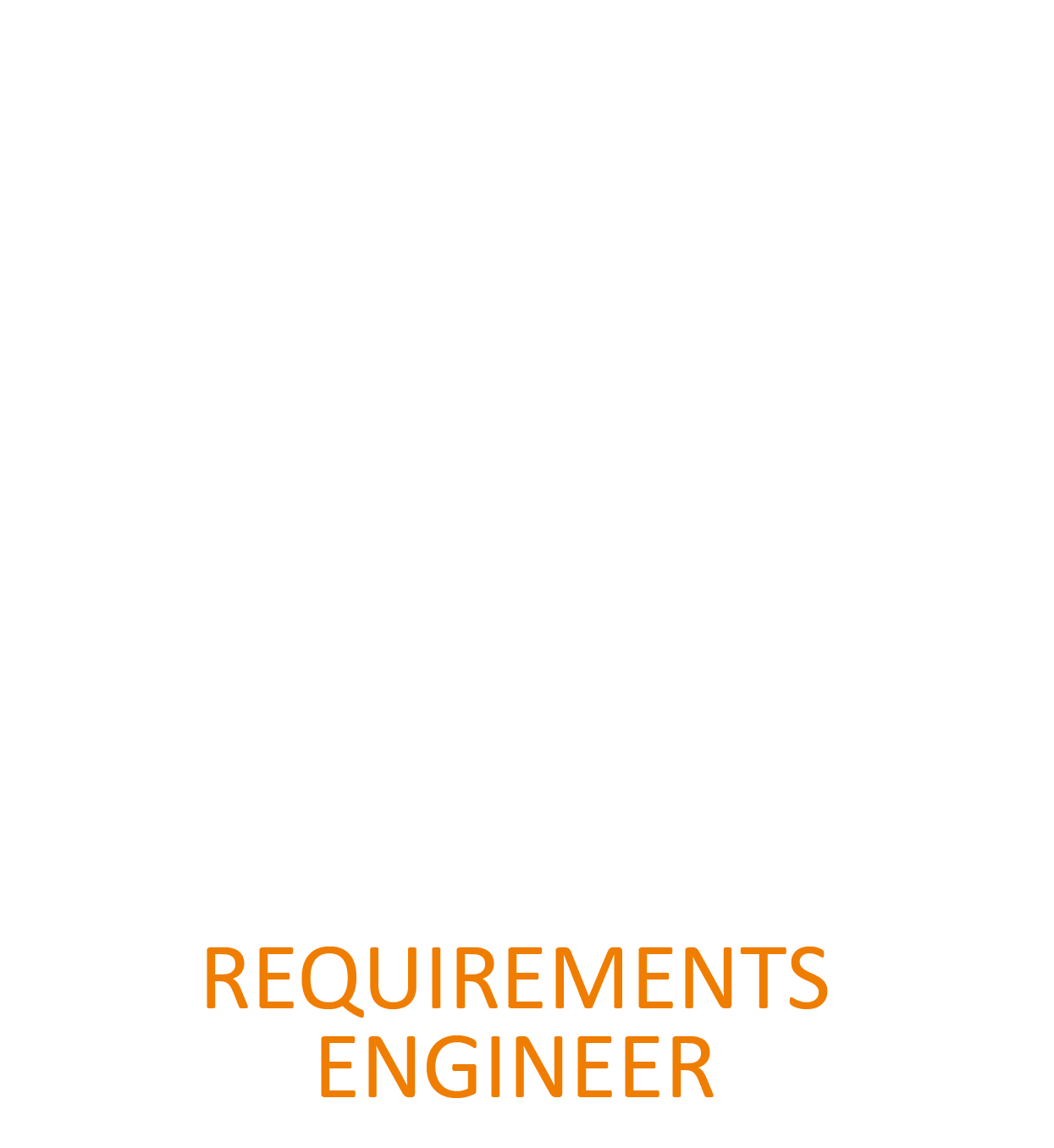 Requirements Engineer